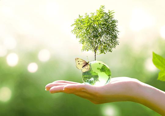 地球環境オンラインカジノ